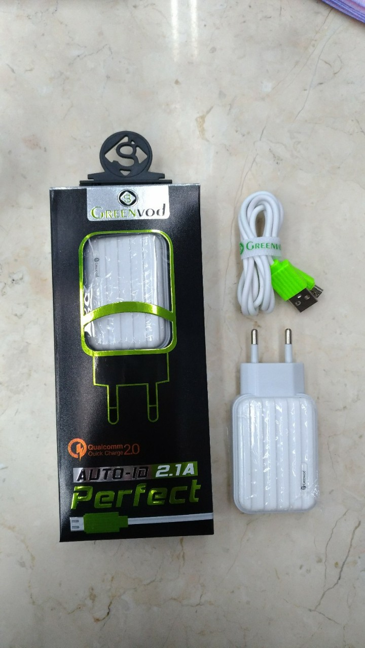 Charger Greenvod DM-210